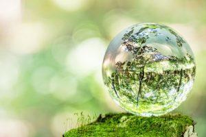 苔の上の綺麗な水晶玉