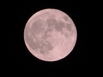 月のうさぎ模様の見え方は?