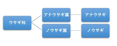 うさぎの系統図
