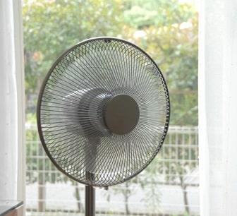 うさぎに扇風機の風を当てるのはダメ!効果的な使い方は?